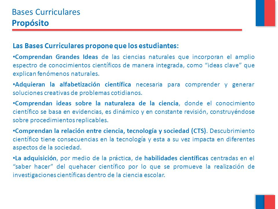 Bases Curriculares Propósito