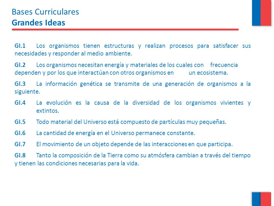 Bases Curriculares Grandes Ideas
