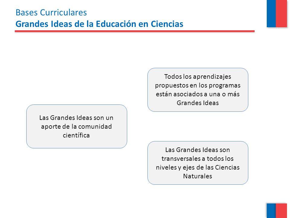 Bases Curriculares Grandes Ideas de la Educación en Ciencias