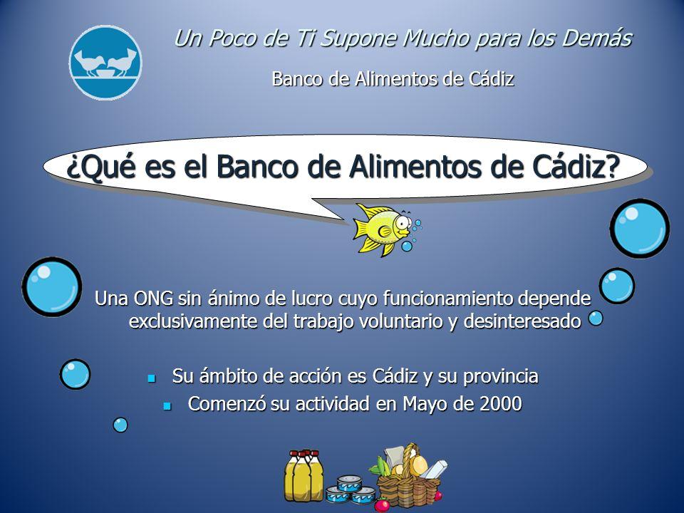 ¿Qué es el Banco de Alimentos de Cádiz