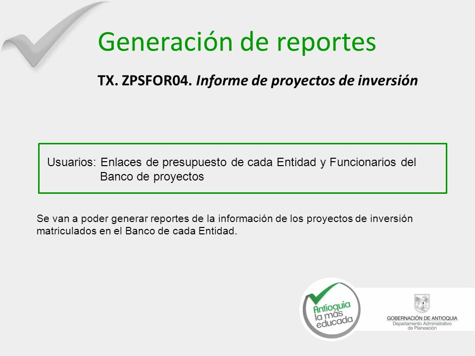 Generación de reportes TX. ZPSFOR04. Informe de proyectos de inversión