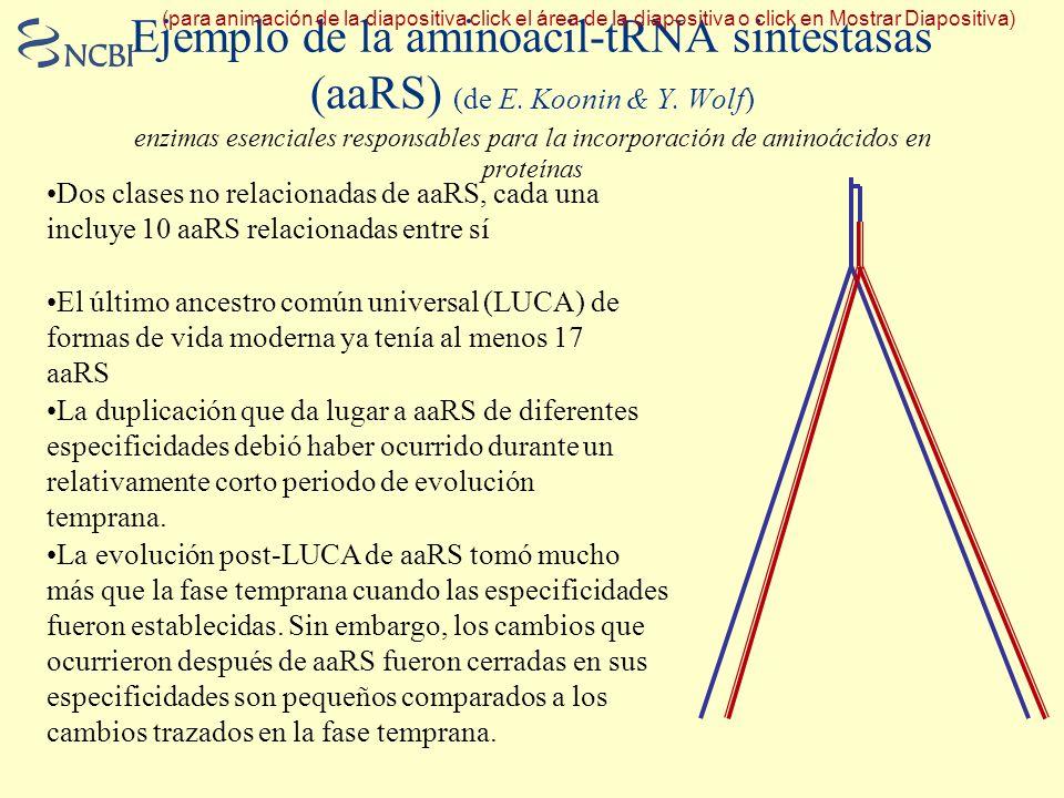 (para animación de la diapositiva click el área de la diapositiva o click en Mostrar Diapositiva)