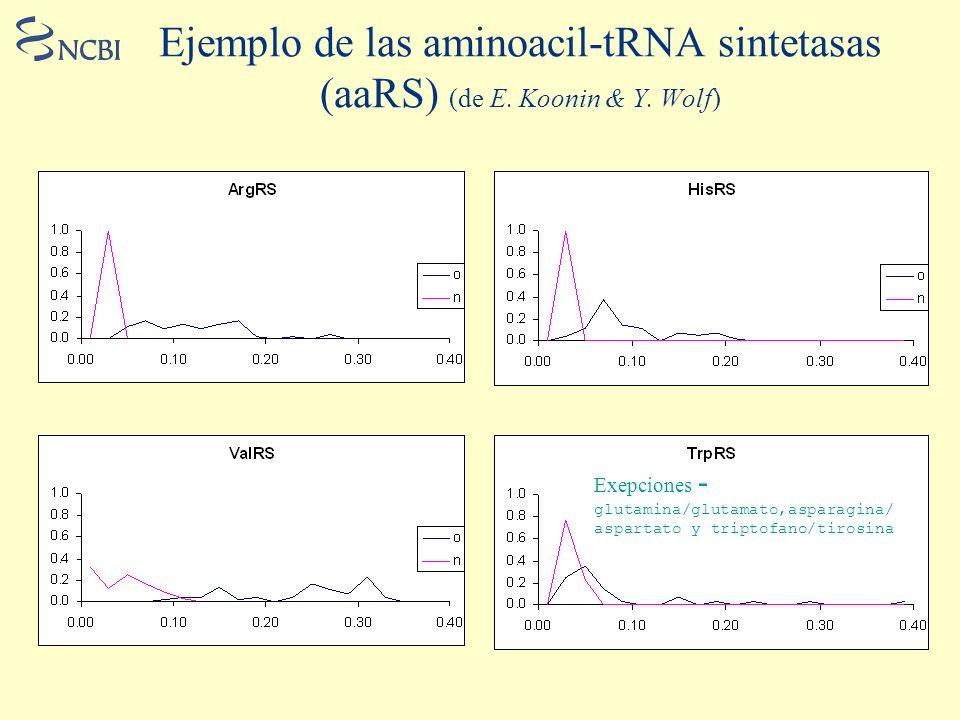 Ejemplo de las aminoacil-tRNA sintetasas (aaRS) (de E. Koonin & Y