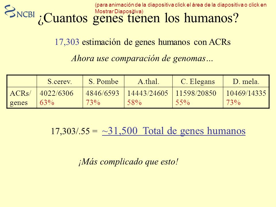 ¿Cuantos genes tienen los humanos