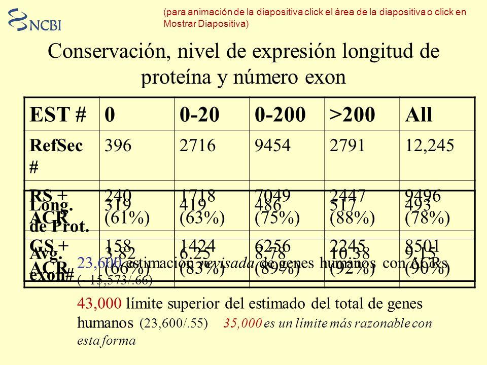 Conservación, nivel de expresión longitud de proteína y número exon