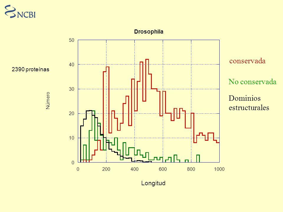 conservada No conservada Dominios estructurales Longitud Drosophila