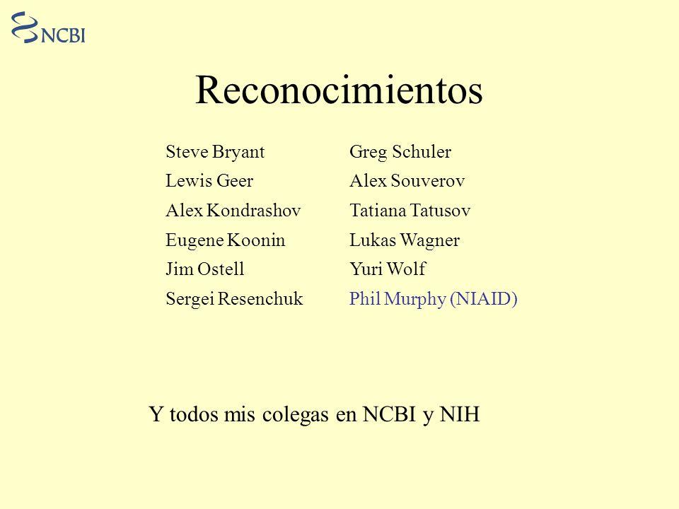 Reconocimientos Y todos mis colegas en NCBI y NIH Steve Bryant