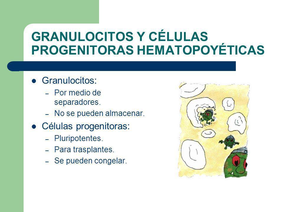 GRANULOCITOS Y CÉLULAS PROGENITORAS HEMATOPOYÉTICAS