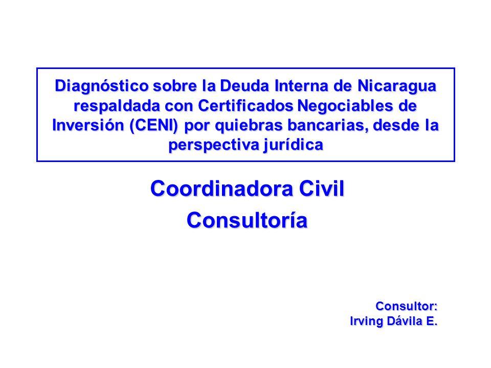 Coordinadora Civil Consultoría