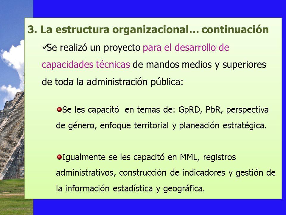 3. La estructura organizacional… continuación