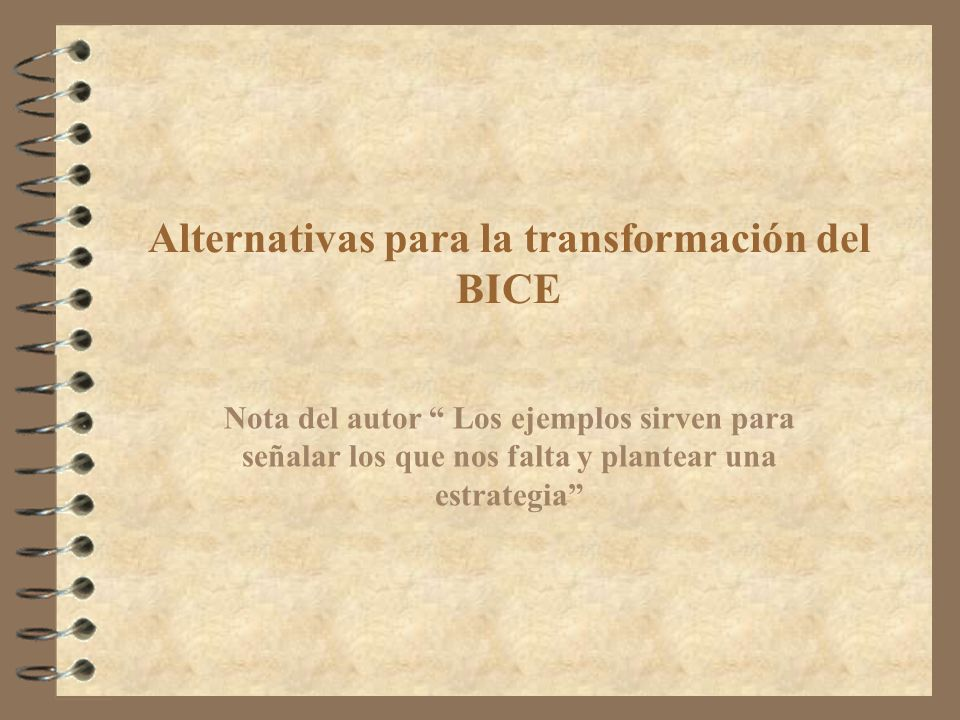 Alternativas para la transformación del BICE