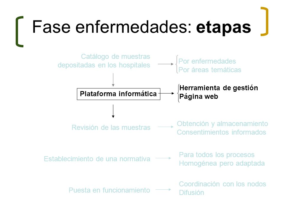 Fase enfermedades: etapas