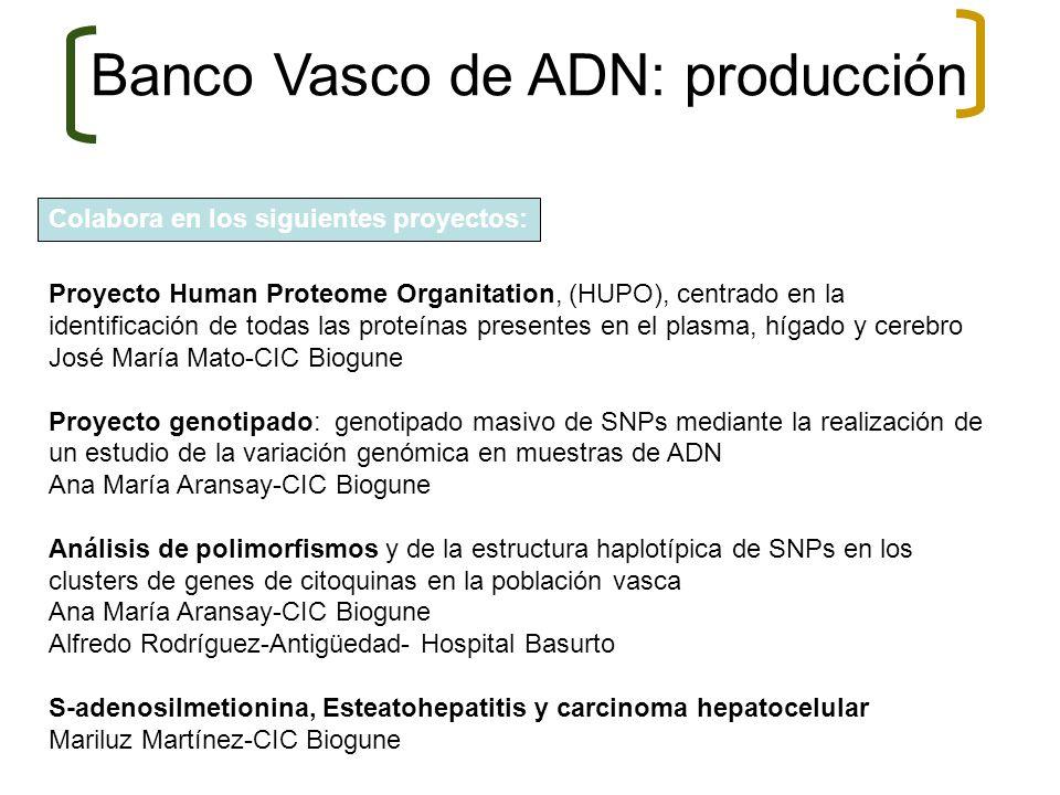 Banco Vasco de ADN: producción