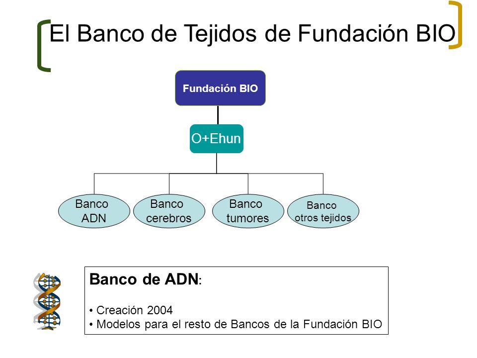 El Banco de Tejidos de Fundación BIO