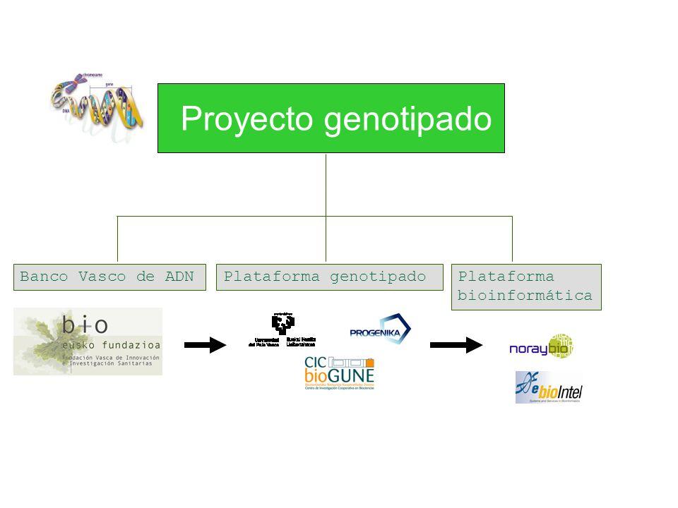 Proyecto genotipado Banco Vasco de ADN Plataforma genotipado