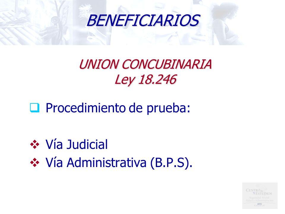 BENEFICIARIOS UNION CONCUBINARIA Ley 18.246 Procedimiento de prueba: