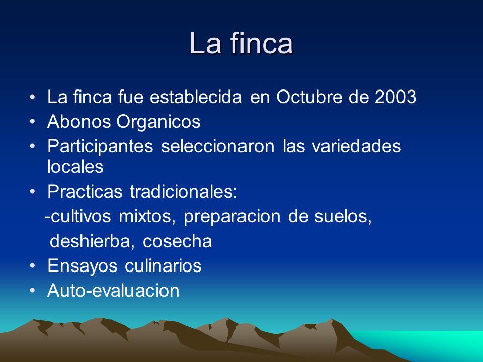 La finca La finca fue establecida en Octubre de 2003 Abonos Organicos