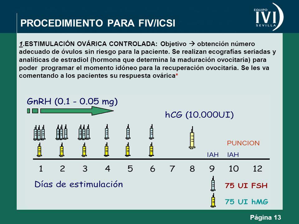 PROCEDIMIENTO PARA FIV/ICSI
