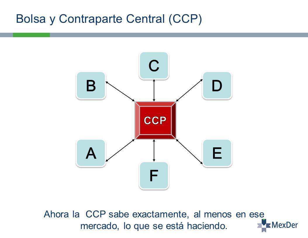 Bolsa y Contraparte Central (CCP)