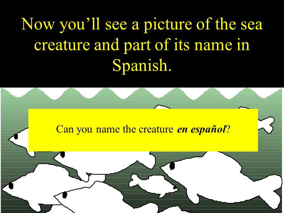 Can you name the creature en español
