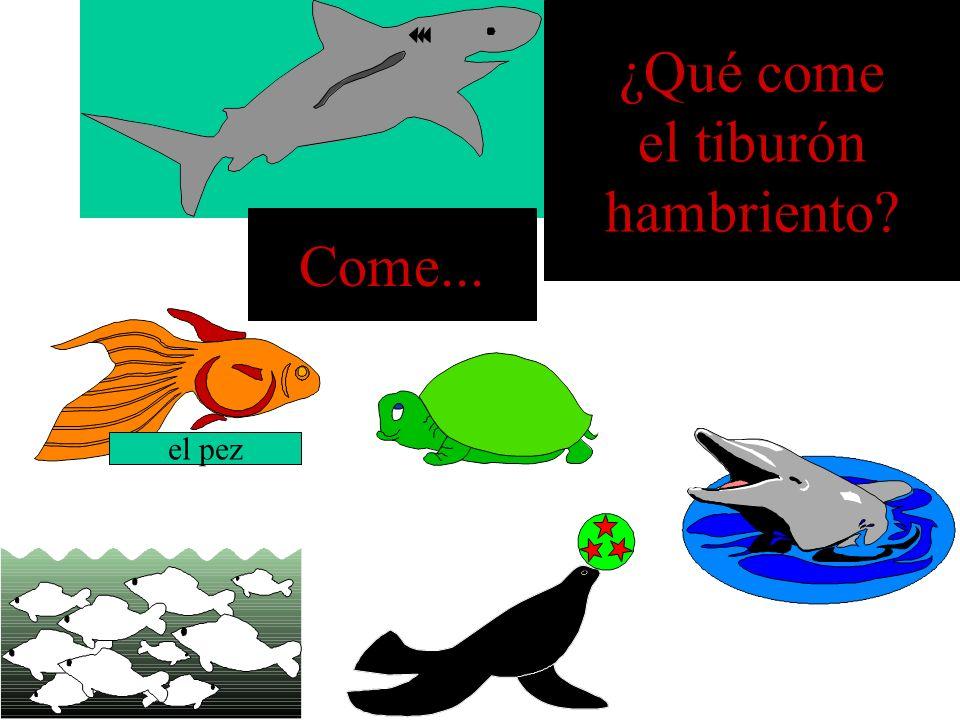 ¿Qué come el tiburón hambriento Come... el pez
