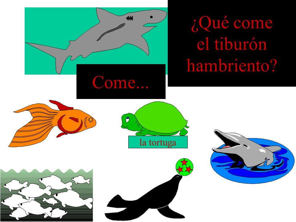 ¿Qué come el tiburón hambriento Come... la tortuga