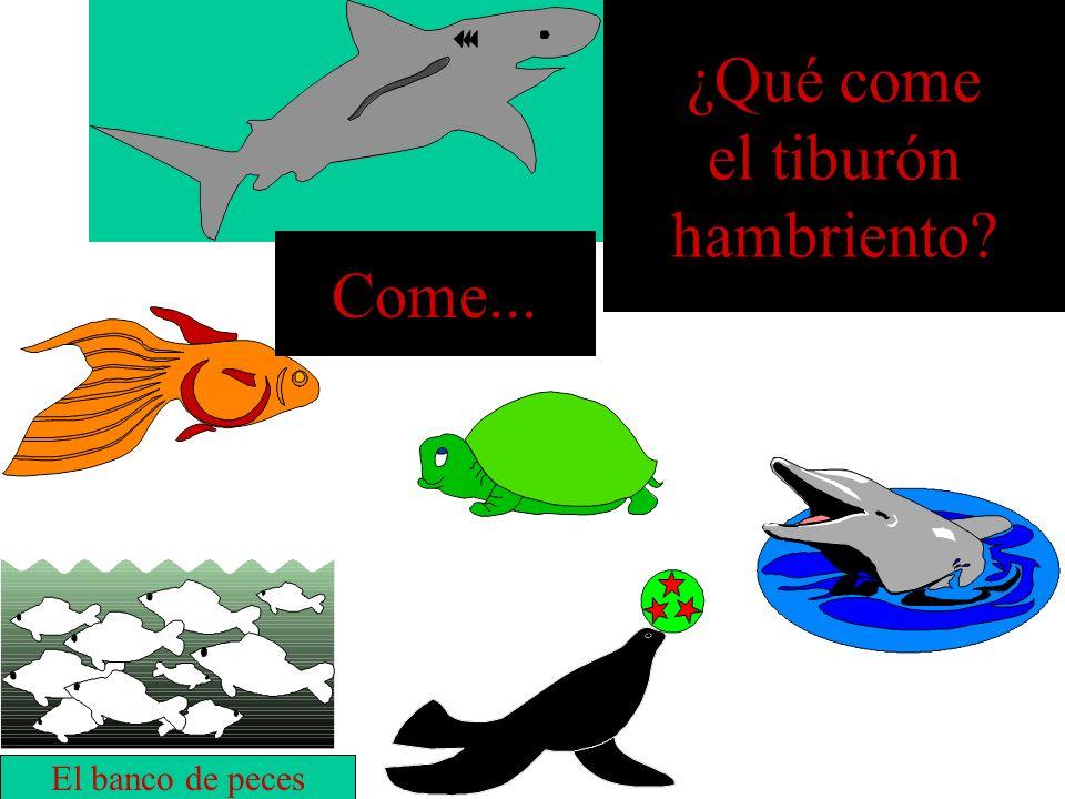 ¿Qué come el tiburón hambriento Come... El banco de peces
