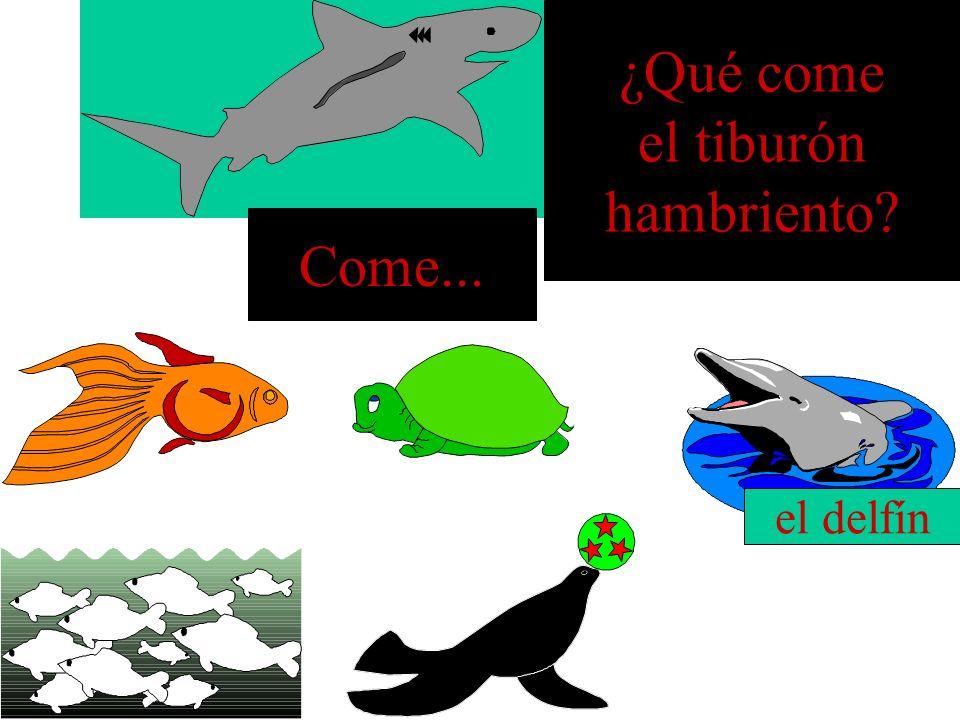 ¿Qué come el tiburón hambriento Come... el delfín