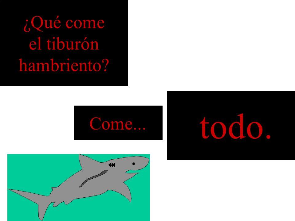 ¿Qué come el tiburón hambriento todo. Come...