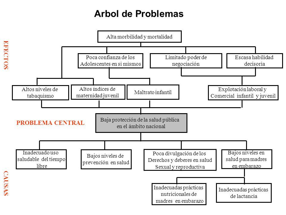 Arbol de Problemas EFECTOS PROBLEMA CENTRAL CAUSAS