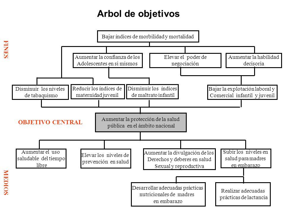 Arbol de objetivos FINES OBJETIVO CENTRAL MEDIOS