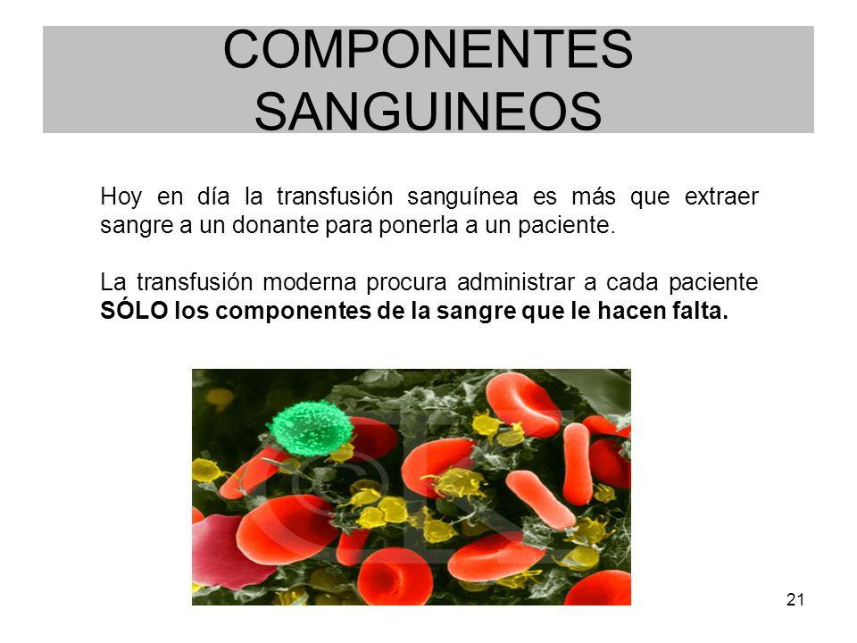 COMPONENTES SANGUINEOS