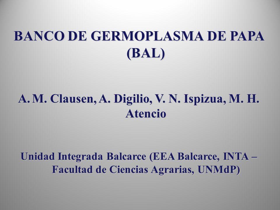 BANCO DE GERMOPLASMA DE PAPA (BAL)