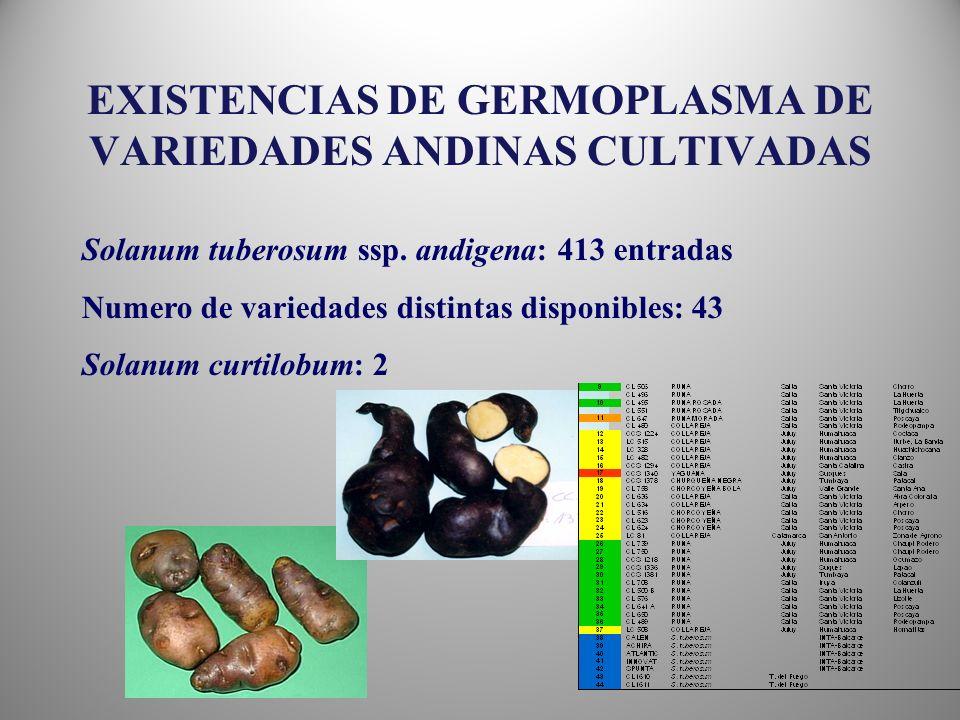 EXISTENCIAS DE GERMOPLASMA DE VARIEDADES ANDINAS CULTIVADAS