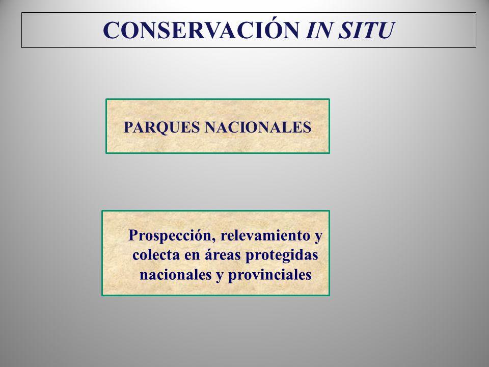 CONSERVACIÓN IN SITU PARQUES NACIONALES