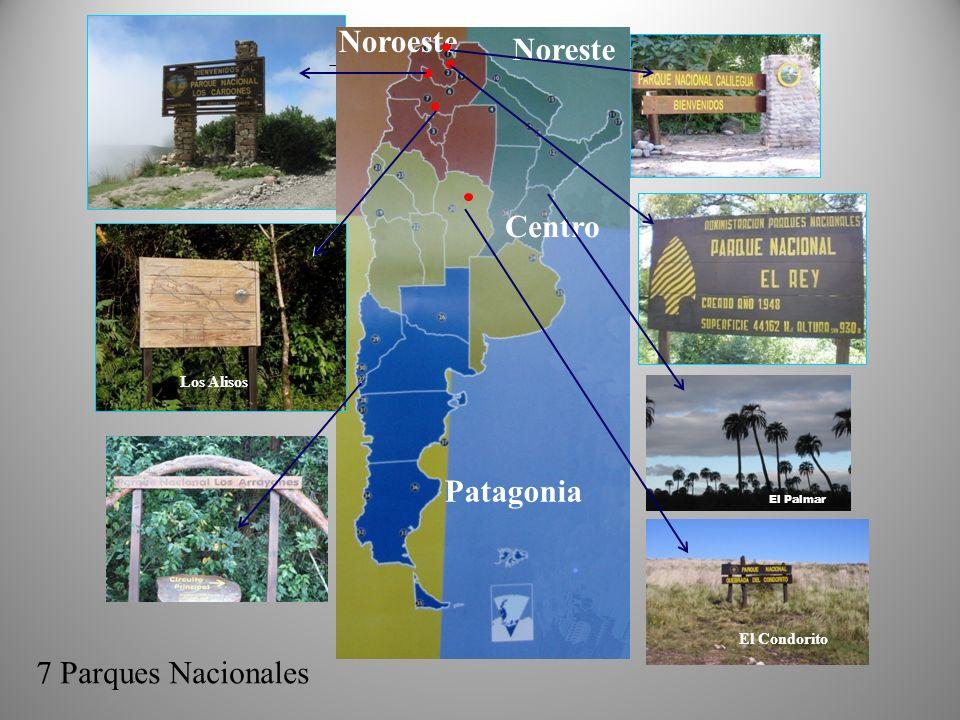 Noroeste Noreste Centro Patagonia 7 Parques Nacionales Los Alisos