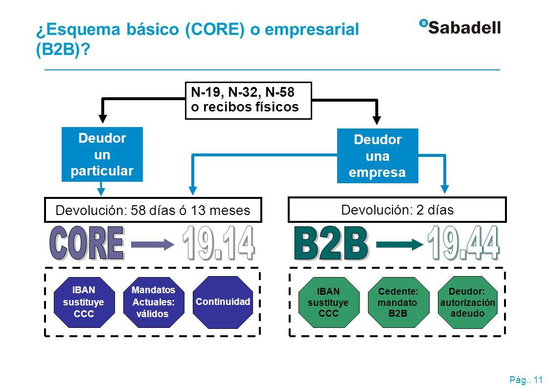 Esquema básico (CORE) Emisor y deudor pueden ser consumidores (particulares) empresas o autónomos.