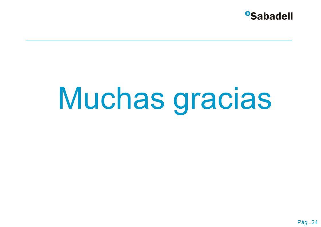 www.grupobancosabadell.com