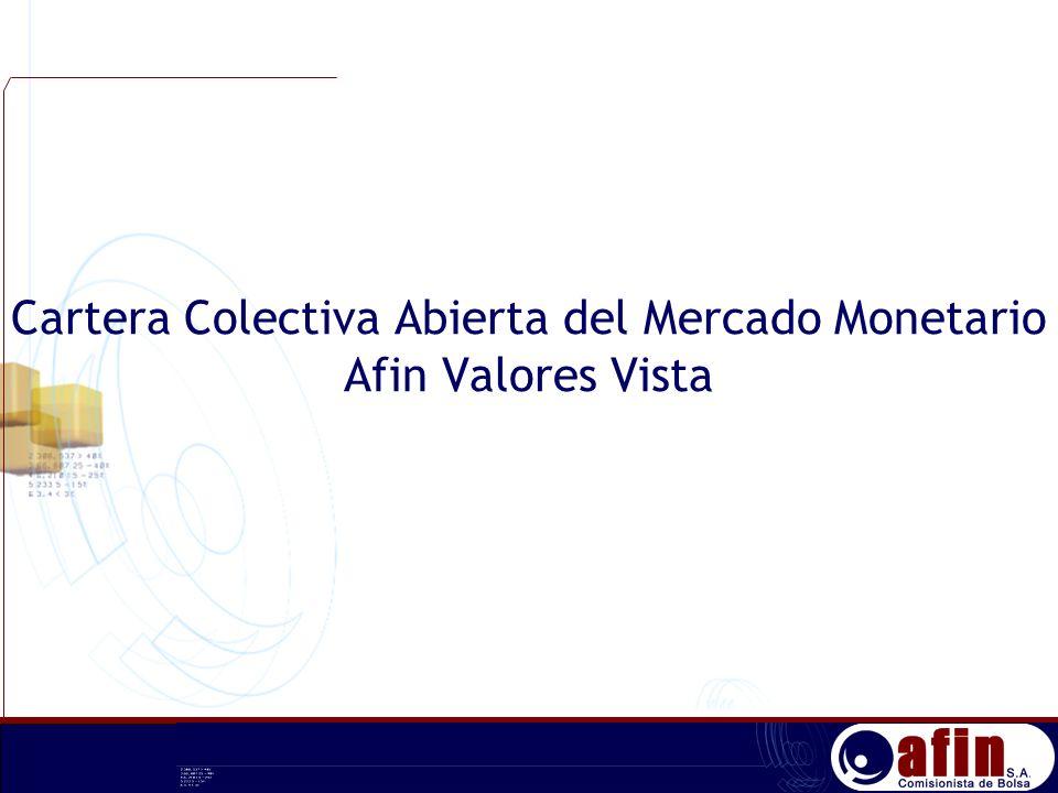 Cartera Colectiva Abierta del Mercado Monetario Afin Valores Vista