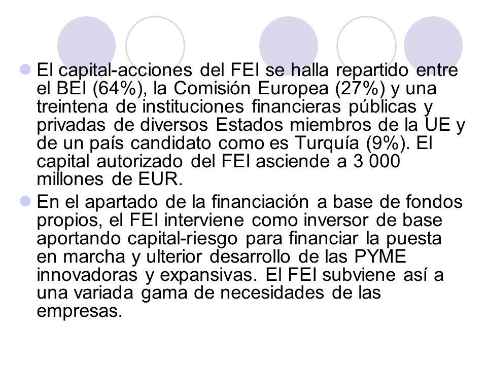 El capital-acciones del FEI se halla repartido entre el BEI (64%), la Comisión Europea (27%) y una treintena de instituciones financieras públicas y privadas de diversos Estados miembros de la UE y de un país candidato como es Turquía (9%). El capital autorizado del FEI asciende a 3 000 millones de EUR.