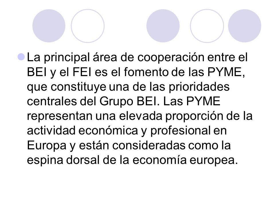 La principal área de cooperación entre el BEI y el FEI es el fomento de las PYME, que constituye una de las prioridades centrales del Grupo BEI.