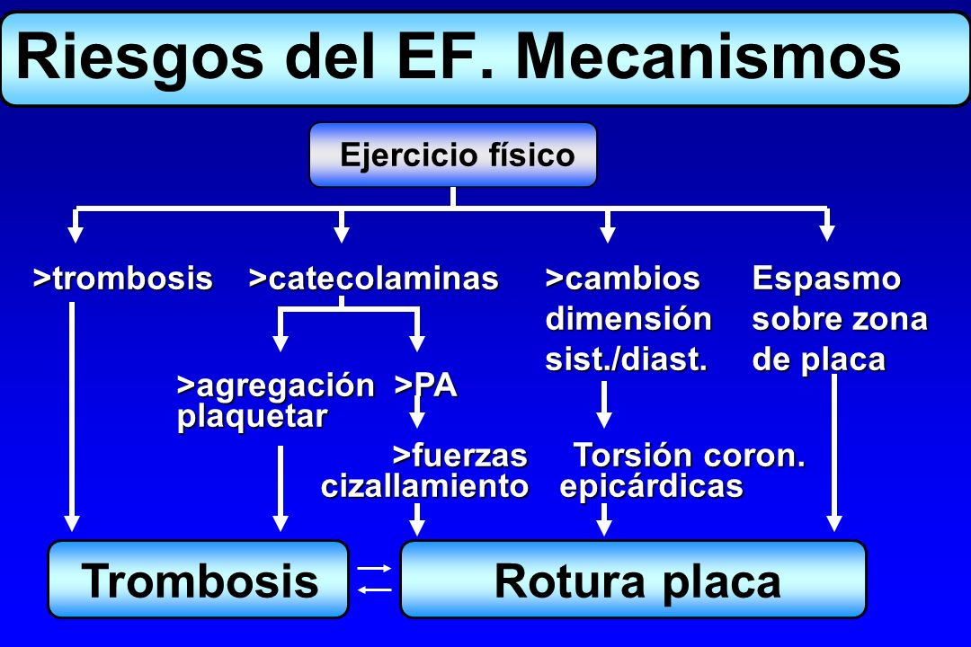 Riesgos del EF. Mecanismos