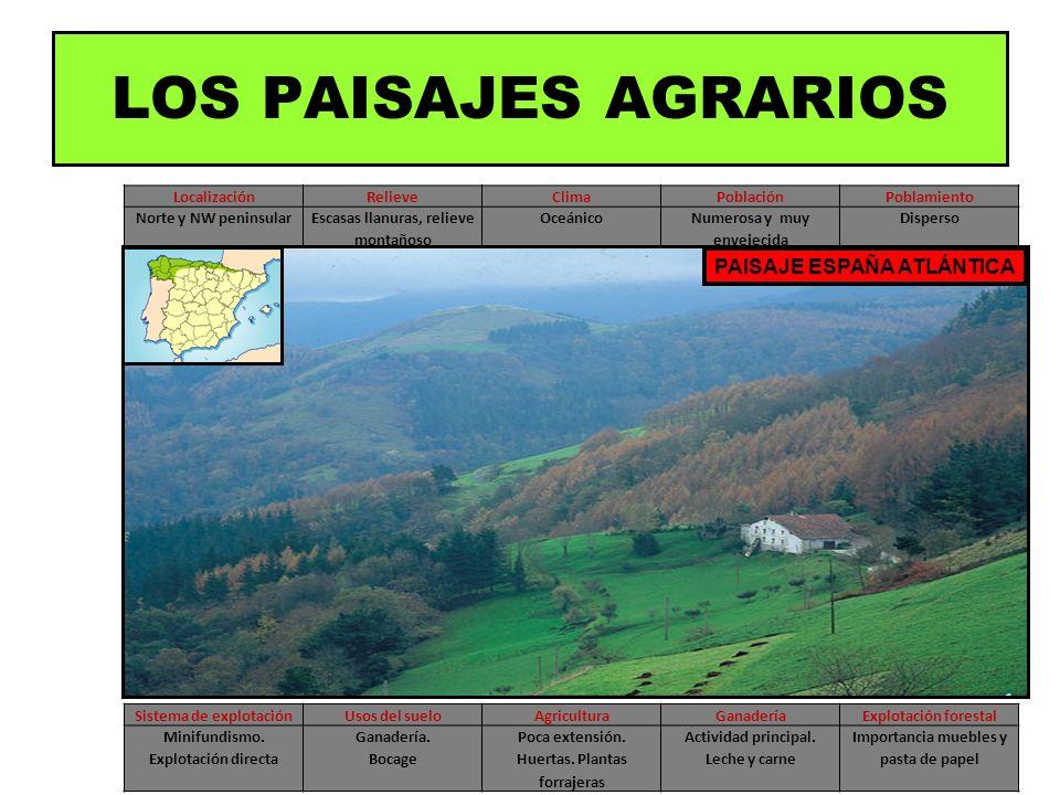 LOS PAISAJES AGRARIOS PAISAJE ESPAÑA ATLÁNTICA Localización Relieve