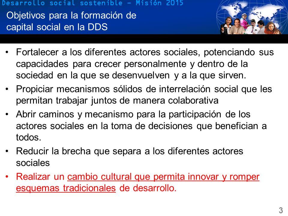 Objetivos para la formación de capital social en la DDS