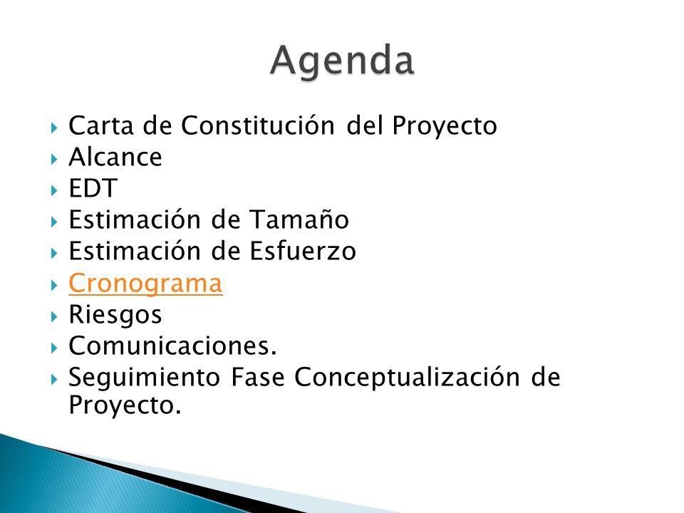 Agenda Carta de Constitución del Proyecto Alcance EDT
