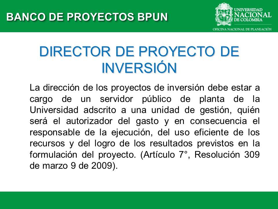DIRECTOR DE PROYECTO DE INVERSIÓN