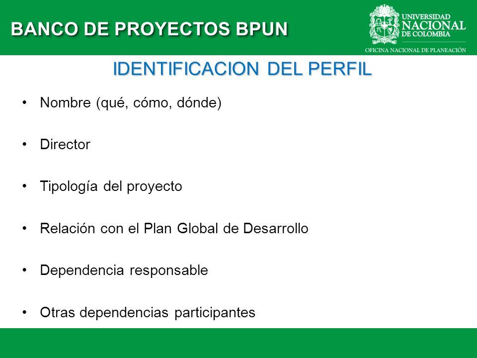 IDENTIFICACION DEL PERFIL