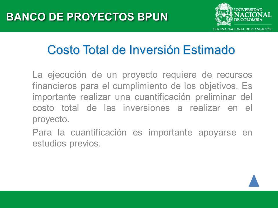 Costo Total de Inversión Estimado