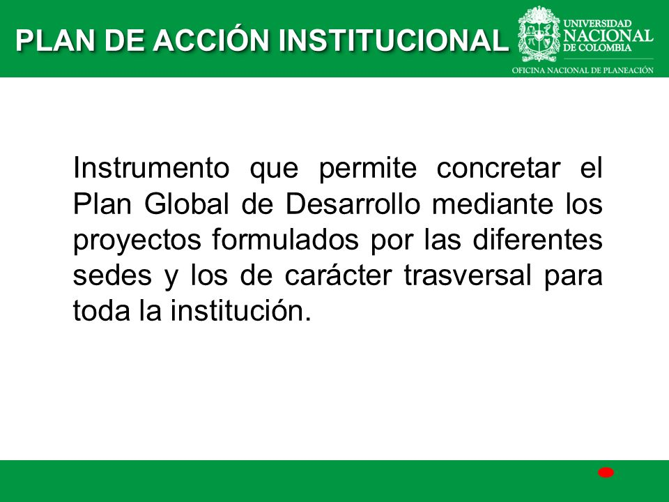 PLAN DE ACCIÓN INSTITUCIONAL