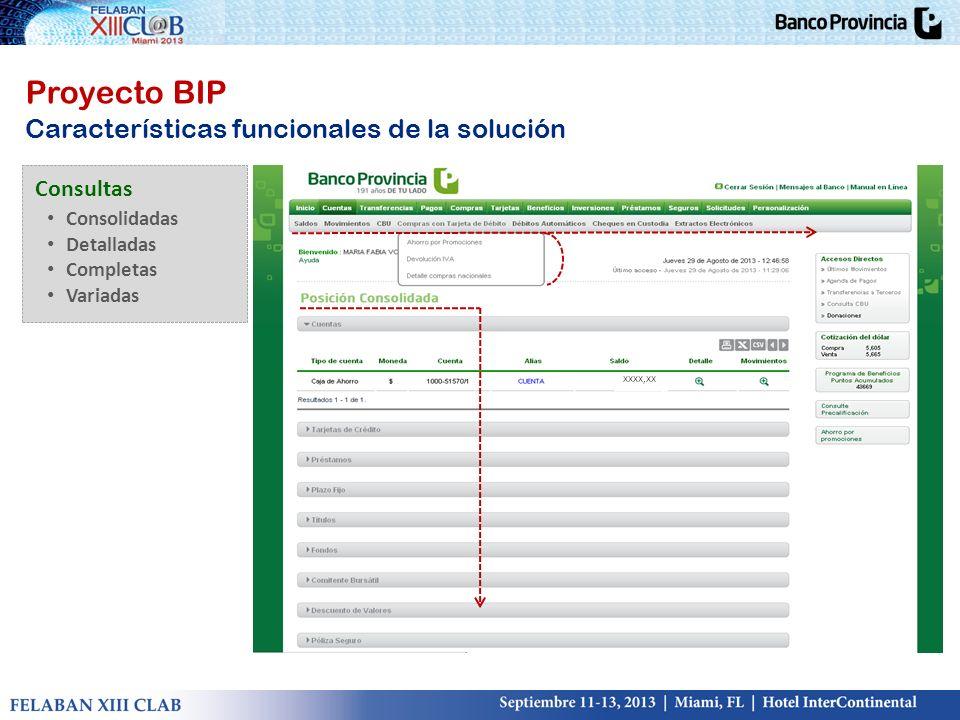 Proyecto BIP Características funcionales de la solución Consultas